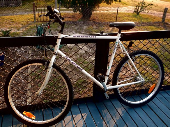 1993 mountain bike